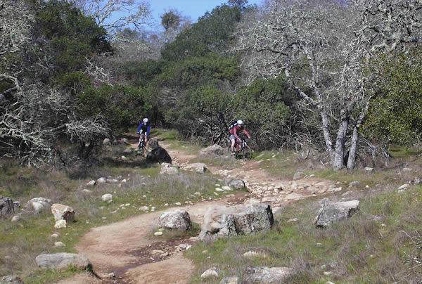 Annadel Mountain Bike Map